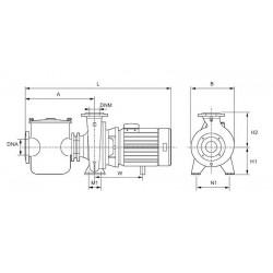 Centrifugal pool pumps